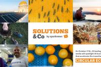 Solutions & Co